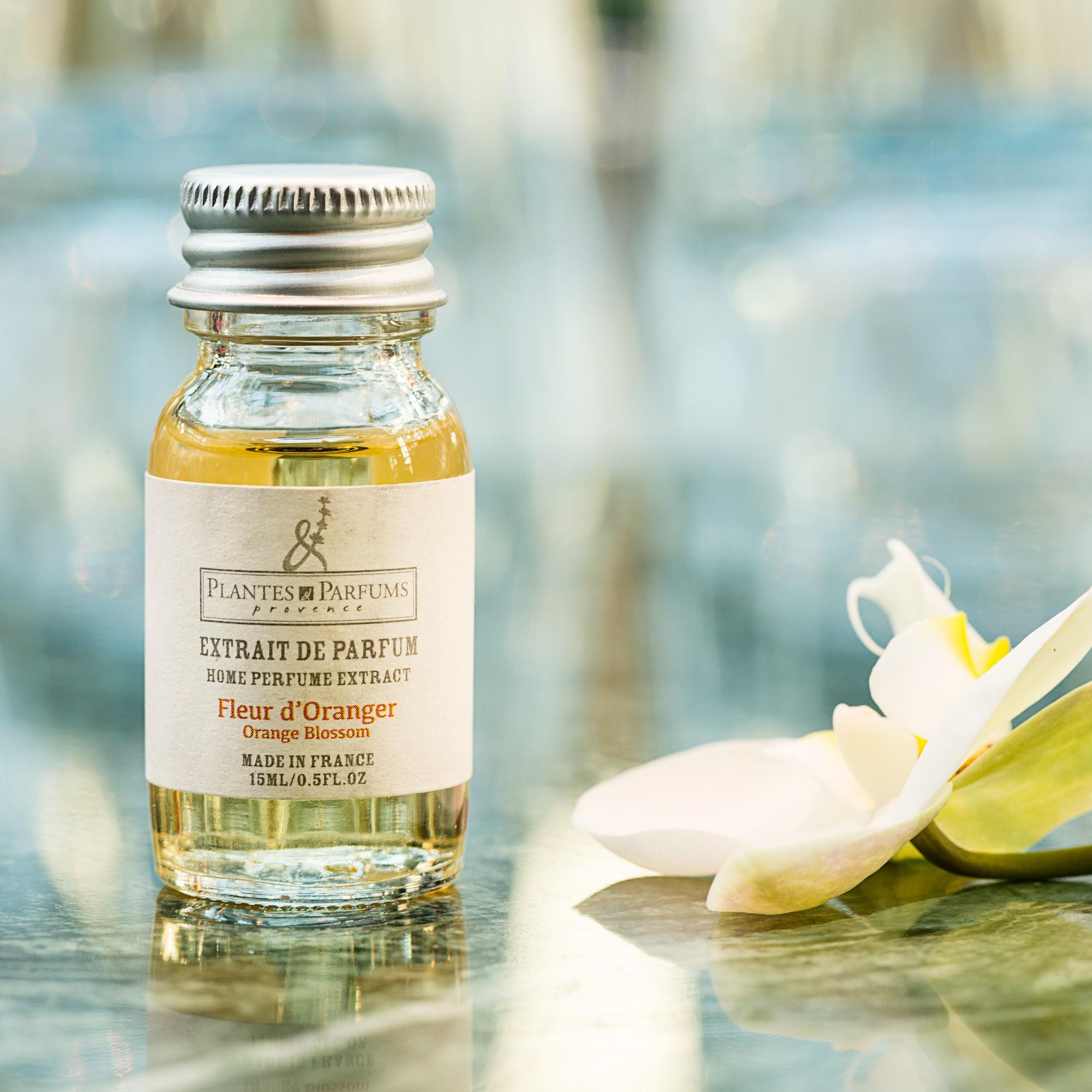 Utilisation fleur d oranger id e d 39 image de fleur - Essence de terebenthine utilisation ...